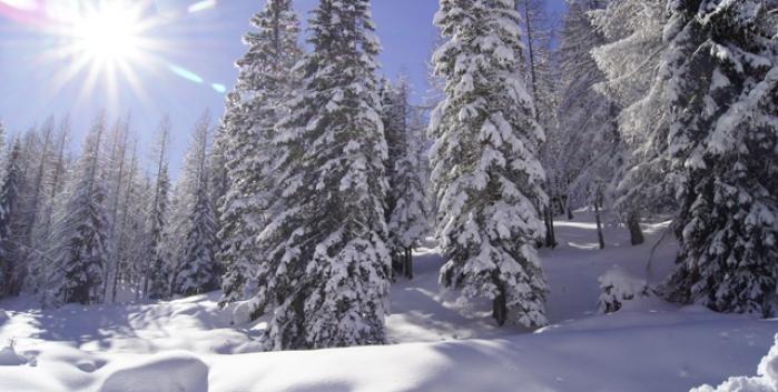 Short Ski Adventure